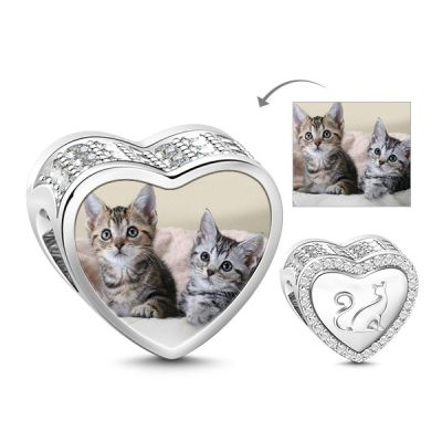 Chat dans Ma Vie