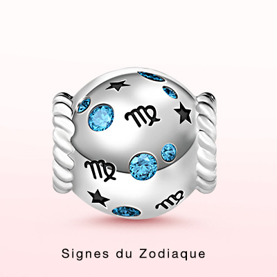 Zodiac Signs Charms